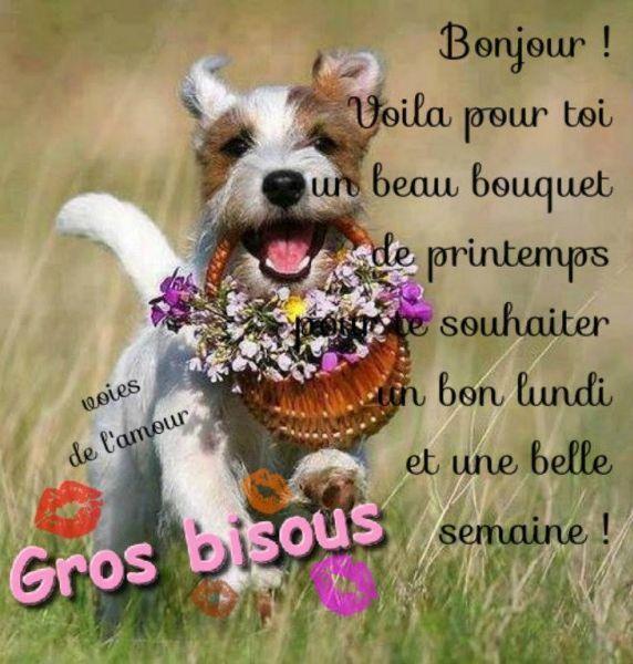 Bon Lundi Bonne Journee